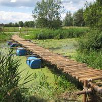 De stam van Scouting Look Wide heeft een brug gepionierd